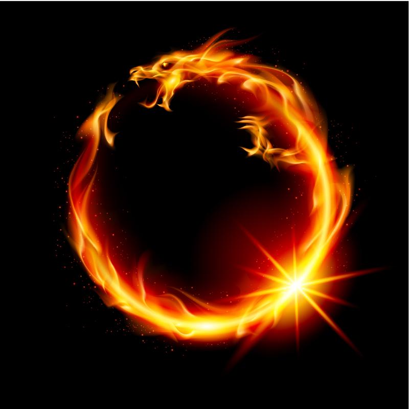miscellaneous fire dragon picture - photo #26